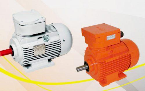 elektromotor BARTEC