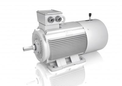 Elektromotor-2LCBR-B3