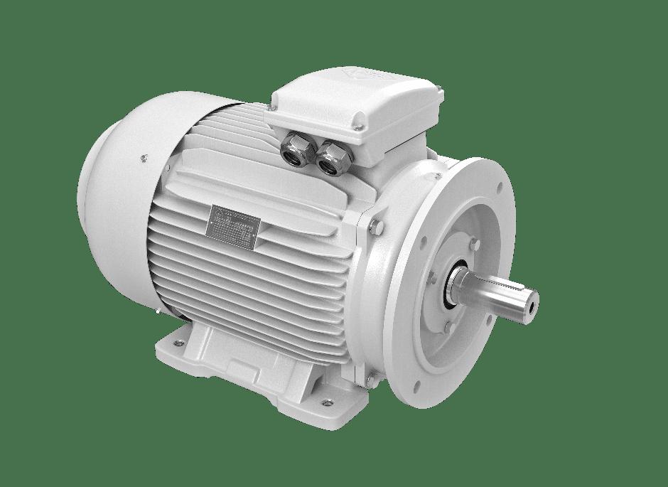 elektromotor 55kw 1LC250M-2