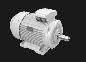 elektromotor 22kw 1LC225M-8