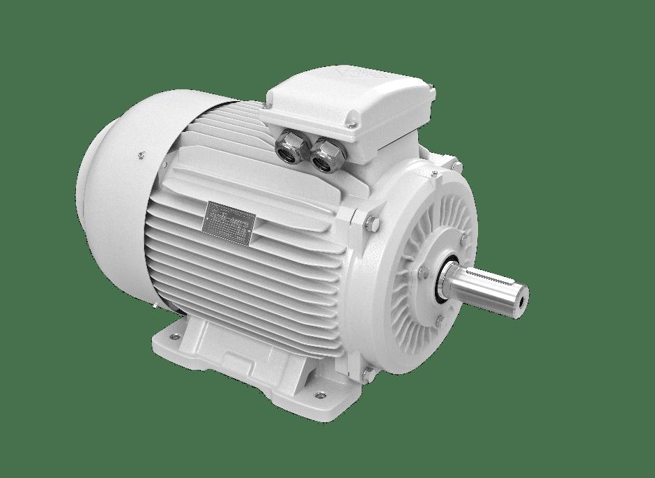 elektromotory 30kw 1LC225M-6
