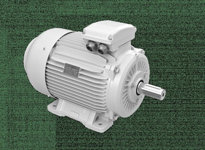 elektromotory 55kw 1LC250M-2