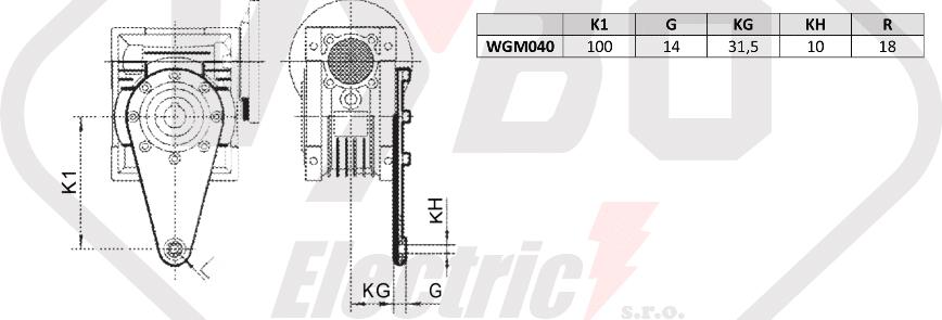 torzní rameno převodovka WGM040
