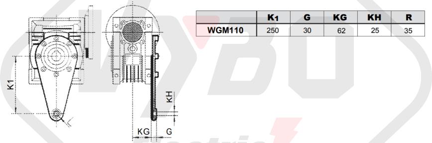 torzní rameno šneková převodovka WGM110