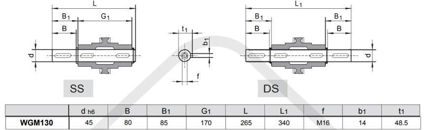 výstupní hřídele šneková převodovka WGM130